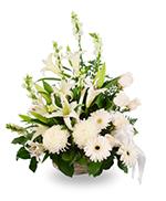 Basket arrangement of mixed white flowers
